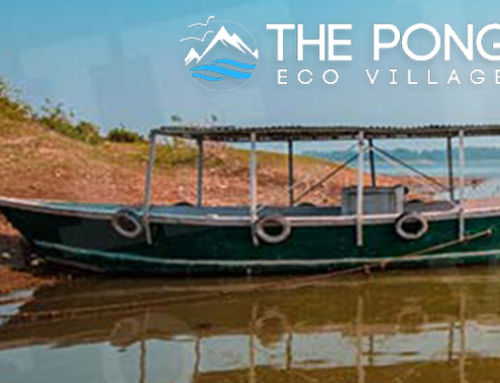 The Pong Eco Village